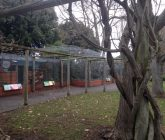Cornwall Aviary