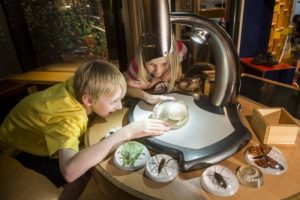 Discovery @ Canterbury Museum, Christchurch Kids On Board