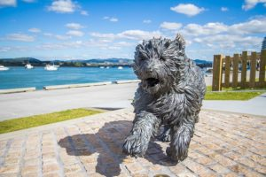 Hairy Maclary Sculptures and Waterfront Playground, Tauranga Kids On Board