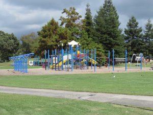 Memorial Park Tauranga 4