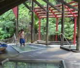 Morere Nikau Pool