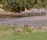 Oakura river Swimming spot