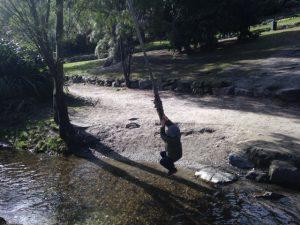 Rope Swing Queenstown