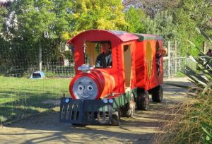 farmyard-zoo-train