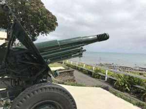 new-plymouth-coastal-walkway-gun