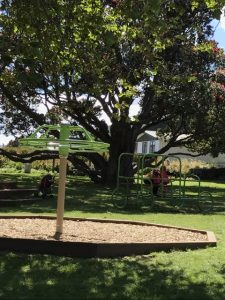 Marine Gardens playground, train and splash pad, Raumati Beach Kids On Board