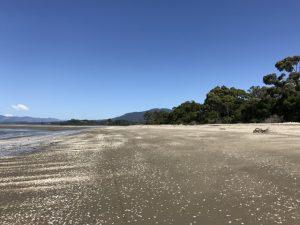 Milnthorpe Parapara beach