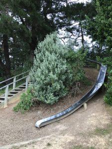 Hidden slide Waitarere