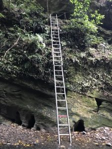 Ladder Patuna