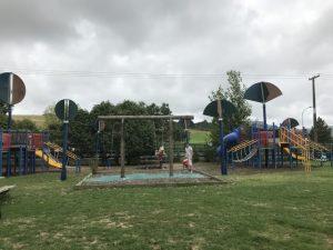 Matakana Country Park Kids On Board