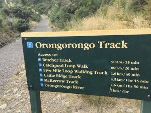 Walks and Overnight tramps in the Rimutaka Forest Park, Wainuiomata Kids On Board