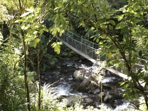 Walking, swimming and Swing Bridge in Waiohine Gorge, near Carterton Kids On Board
