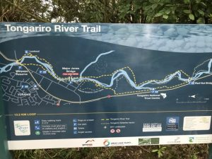 Tongariro River Trail, Turangi Kids On Board